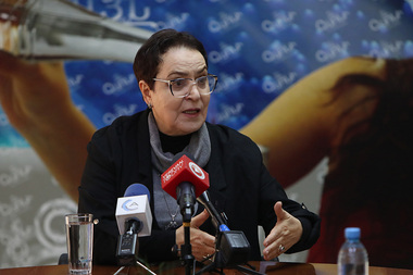 First Human Rights Defender Larisa Alaverdyan gives a press conference in Henaran press club - Photolure News Agency